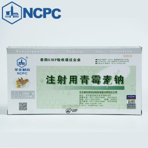 Benzylpenicillin Sodium for Injection