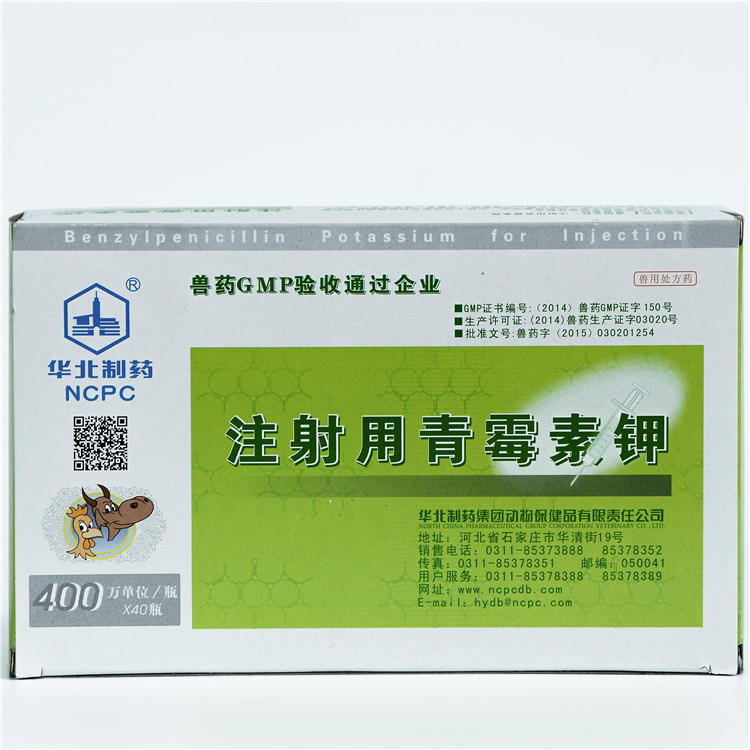 Good User Reputation for Weight Gain Gmp Iron Dextran B12 Injection - Penicillin Potassium for Injection – North China Pharmaceutical