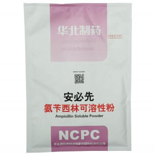 Ampicil·lina Soluble Powder