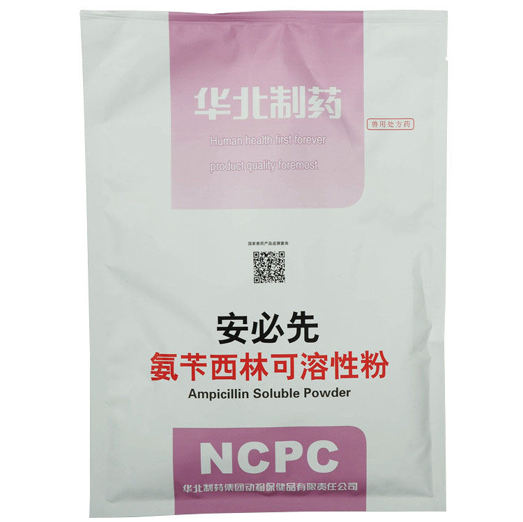 Ampicillin Soluble Powder Featured Image