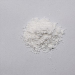 Amoksisilin larut Powder