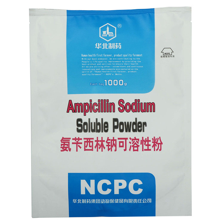 Ampicillin Sodium Soluble Powder Featured Image