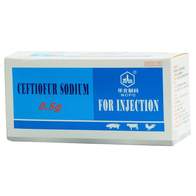 Ceftiofur-Natrium zur Injektion Ausgewähltes Bild